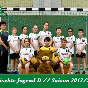 Gemischte Jugend D Saison 2017/18