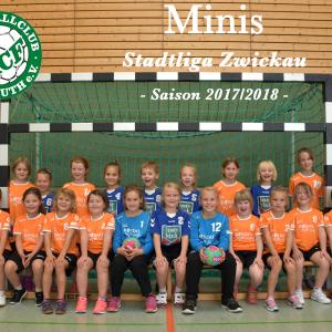 Minis Stadtliga Zwickau Saison 2017/2018